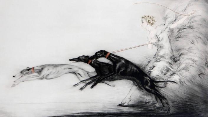 Una Matilha de Cães