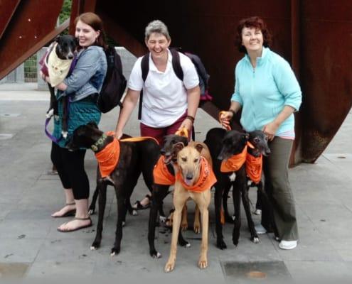 Arrivo Greyhound - 23 Giugno 2018