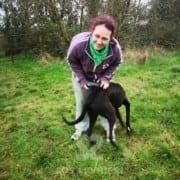 Scott - Greyhound