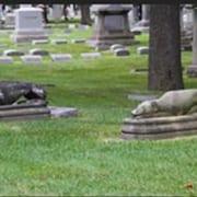 Statue di Levriero nel cimitero di Rosehill