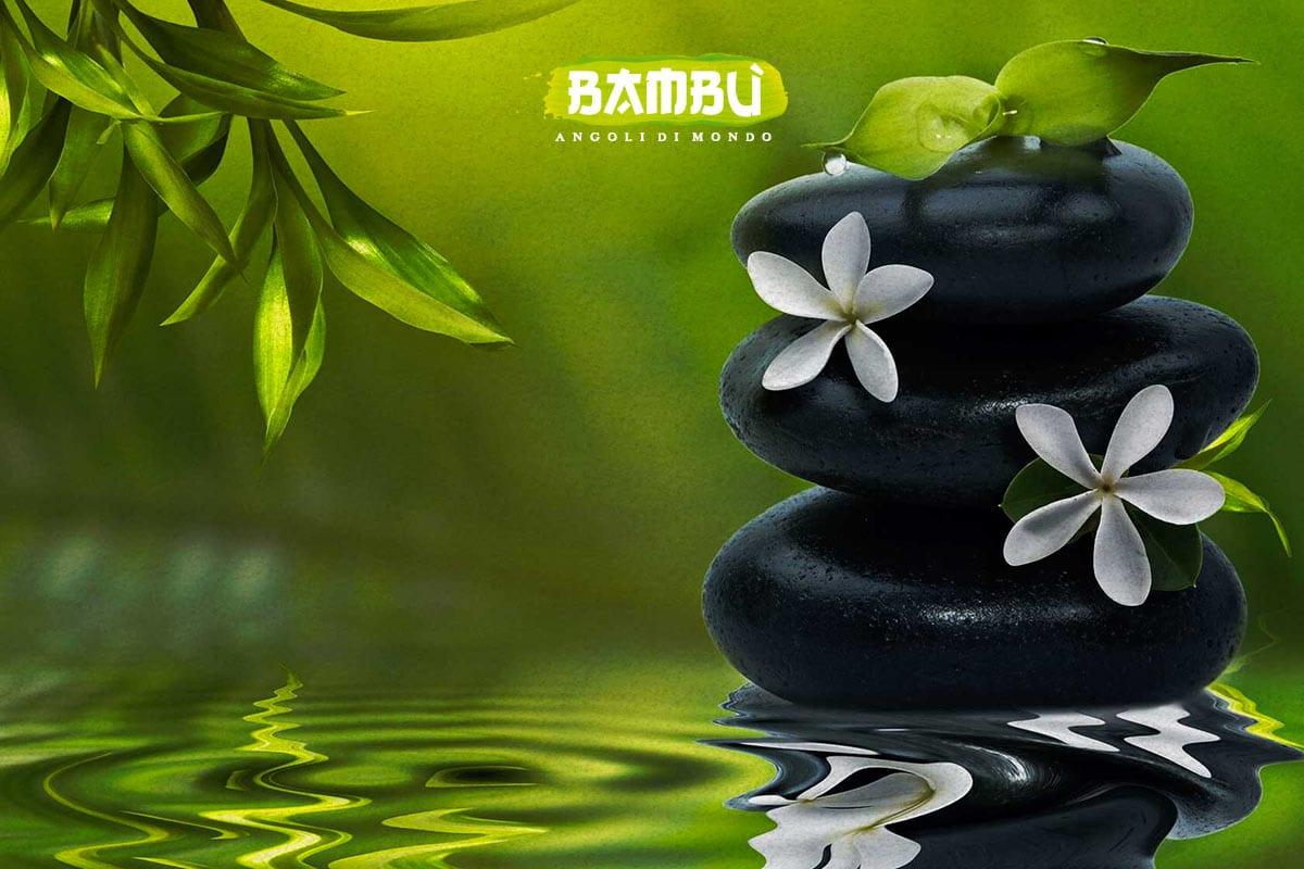 Bambù Lagep - Azienda Convenzionata SOS Levrieri